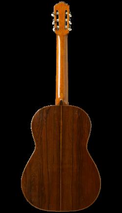 esteso-1930-back