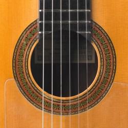 fernandez-1962-rosette