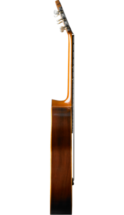 hernandez-1930-side